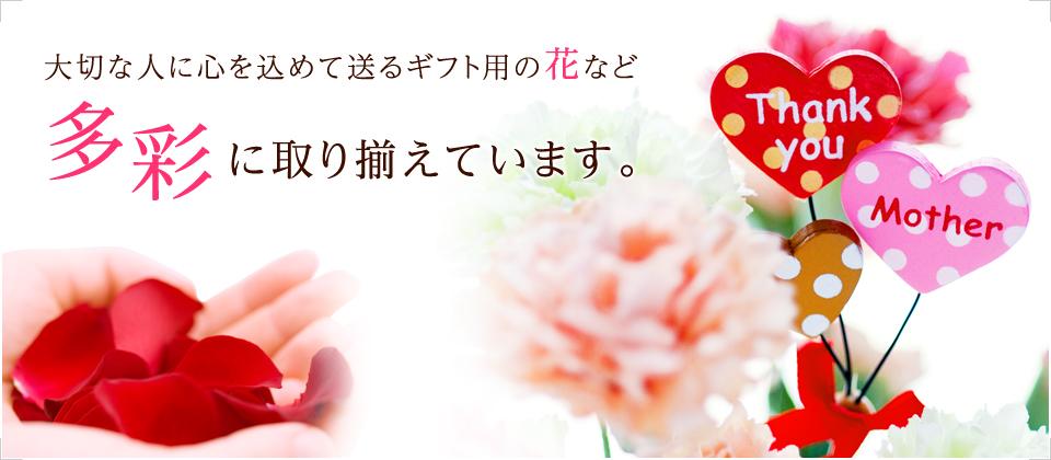 大切な人に心を込めて送るギフト用の花など多彩に取り揃えています。
